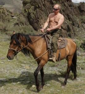 Russia Putin's Cranes